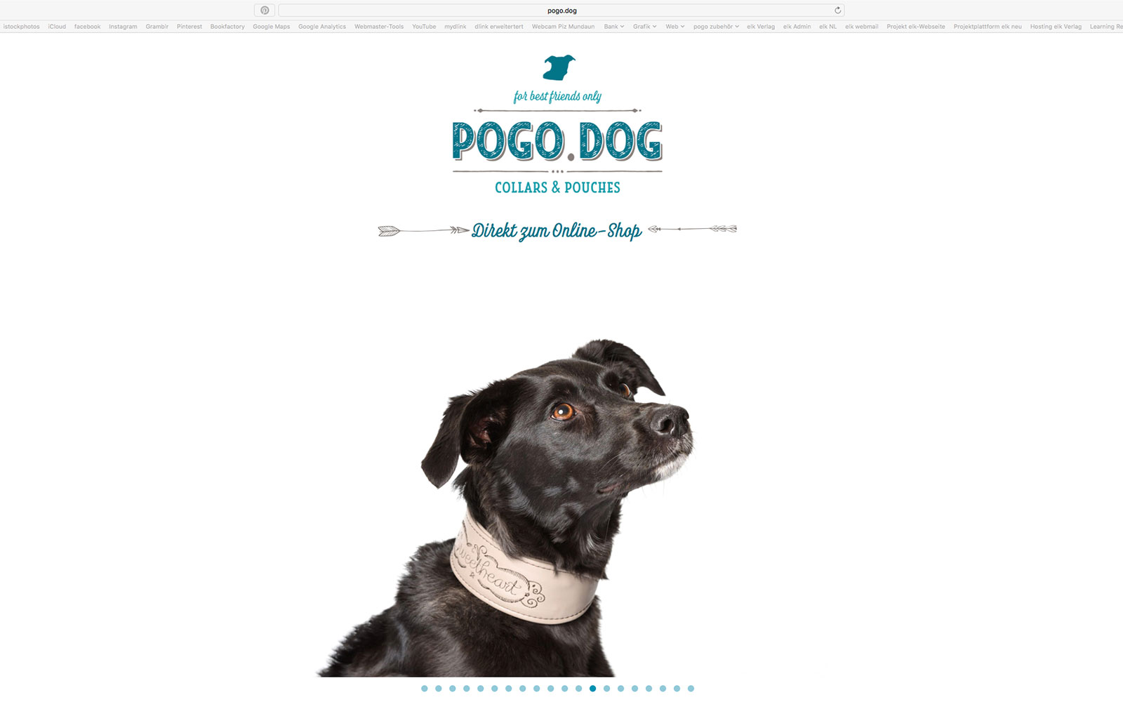referenz web – pogo dog
